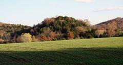 """""""Duden's Hill"""""""